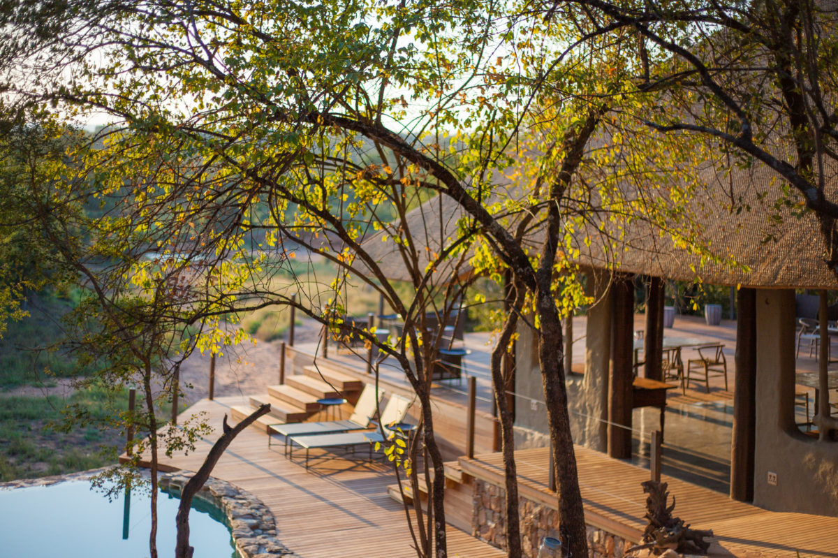 Garonga Safari Camp – A Well-Kept Secret of South Africa