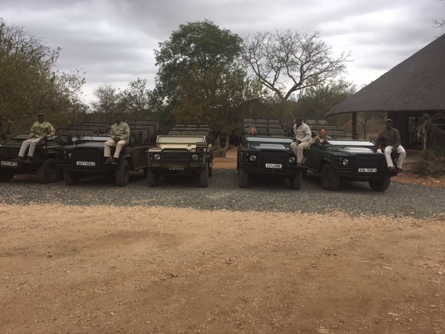 Behind the Scenes: Meet the Safari Guide Team