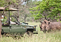 Rhino River Lodge - Hluhluwe Big 5 Game Reserve