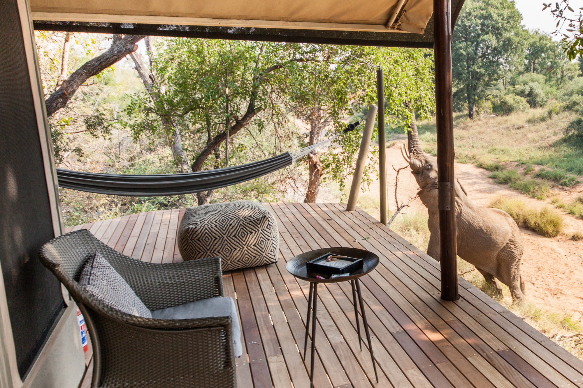 Garonga_accommodationWILDWEB180