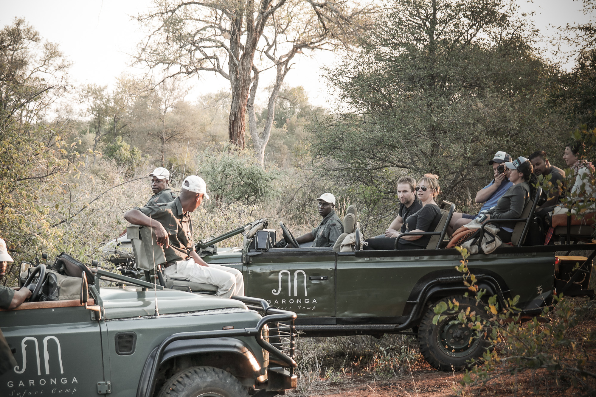 Being a safari guide: behind the scenes
