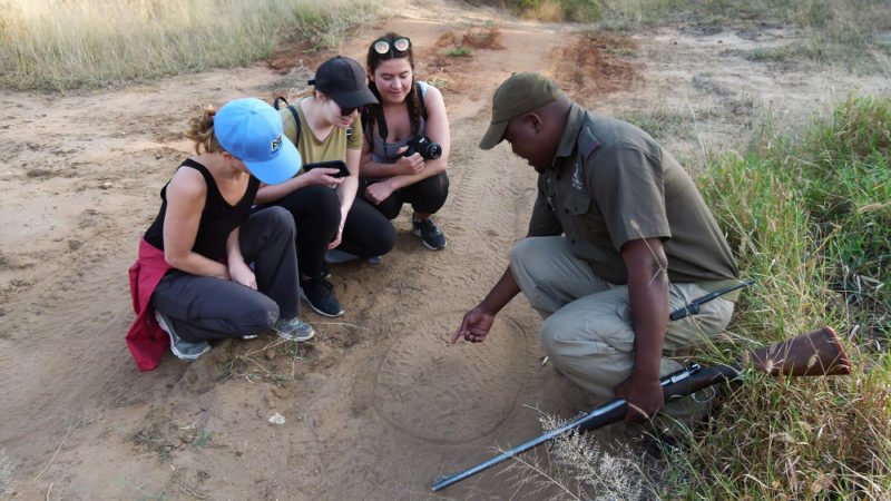 Garonga, Safari Camp, Walking Safari, Africa Safari, Big 5 Safari