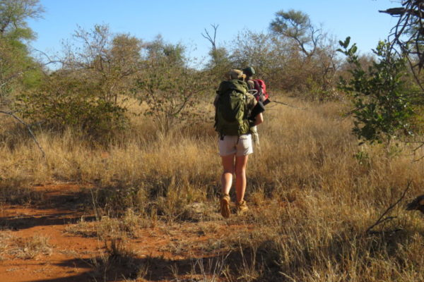 Bush Walk, Luxury Safari, Holidays in South Africa,