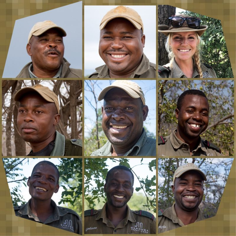 Safari Camp Stories: Reflections on the Year Behind Us!