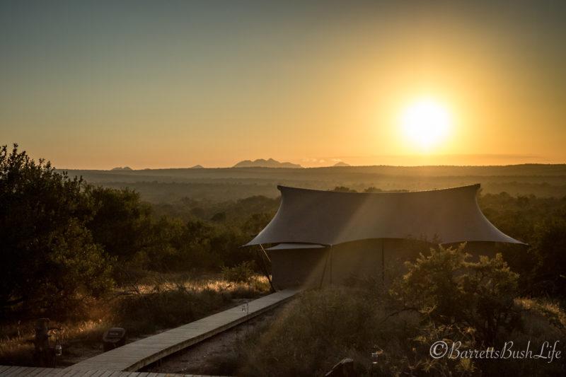 Luxury Safari, Sunrise, Tented Camp