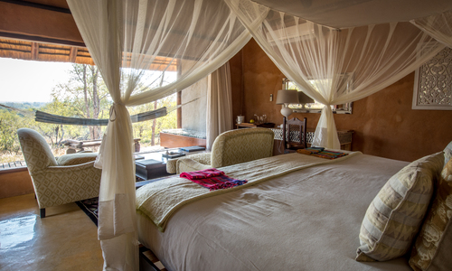Safari Picture