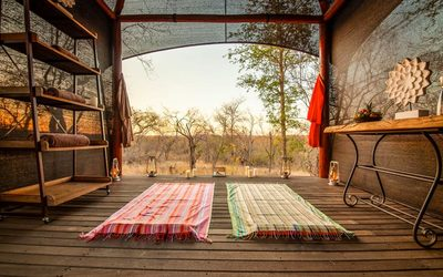 Safari Picture Gallery